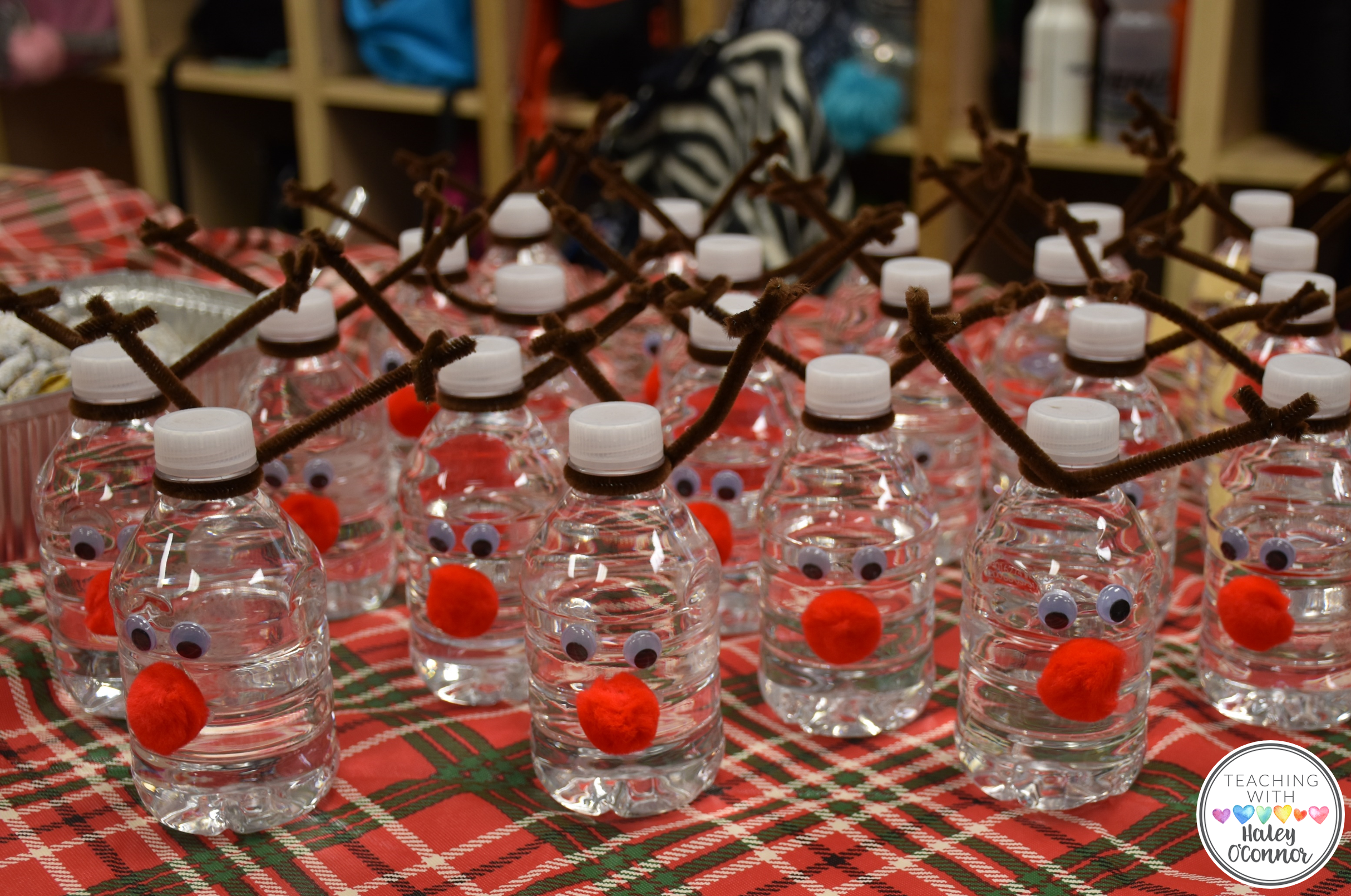 Reindeer Water Bottles